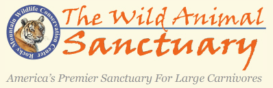 The-Wild-Animal-Sanctuary